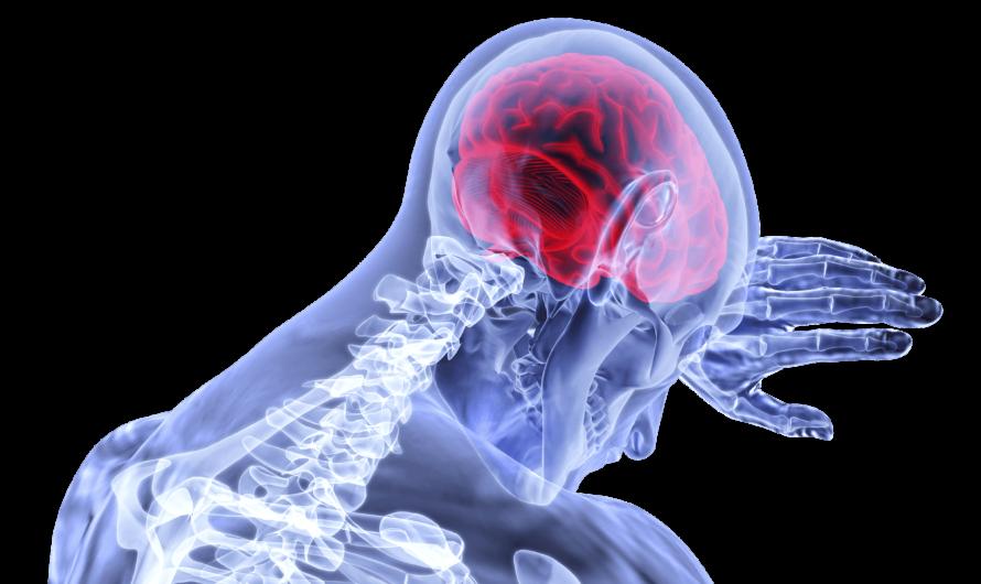 ИИ прогнозирует эпилептические припадки до появления симптомов