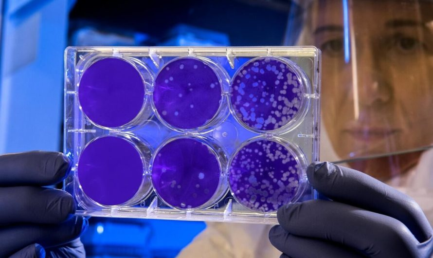 Машинное обучение помогает обнаружить респираторные вирусы