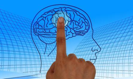Нейросеть научили искать аневризмы в мозге человека