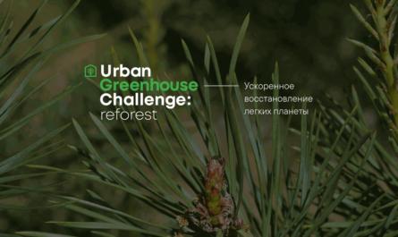 Urban Greenhouse Challenge Reforest