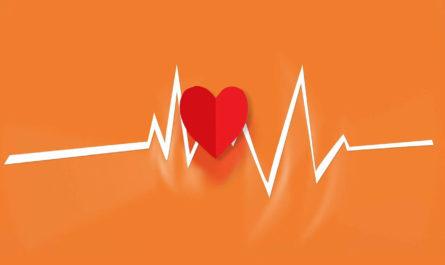 ИИ ищет препараты для лечения генетических нарушений при пороках сердца