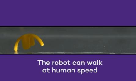 Миниатюрные роботы могут действовать как живые организмы
