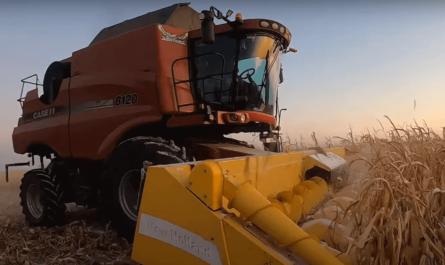 Первая в мире уборка урожая беспилотным комбайном
