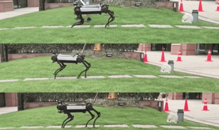 Роботов научили придумывать новые навыки самостоятельно