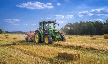 Сельское хозяйство становится перспективным направлением для ИИ