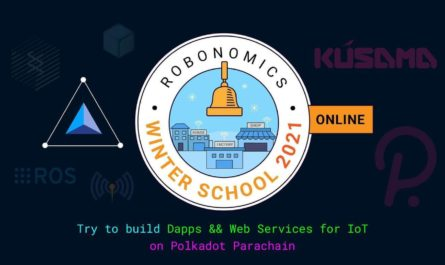 Robonomics Winter School 2021