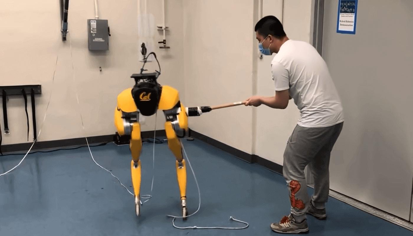 Двуногий робот учится ходить