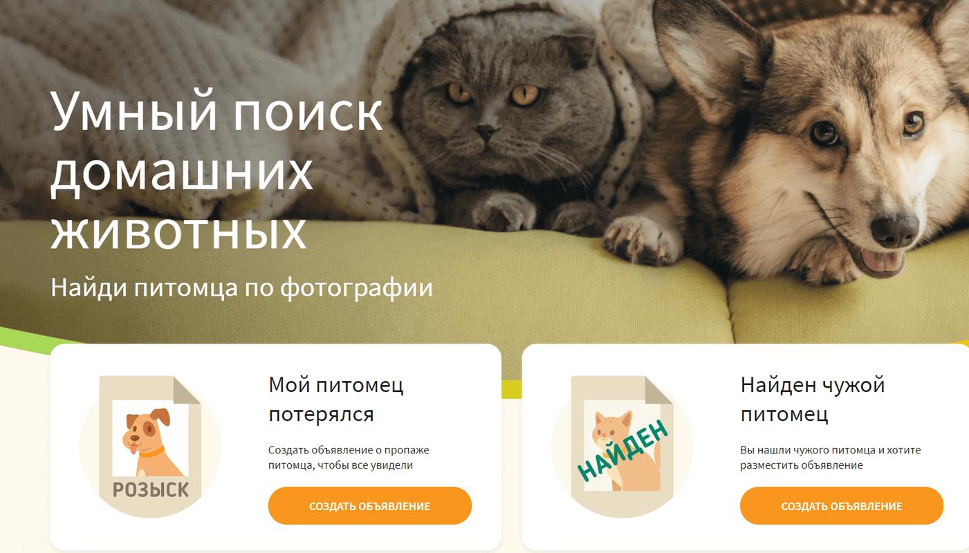 Хвост удачи онлайн-сервис